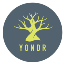 Yondr phone pouches spreading throughout Milton
